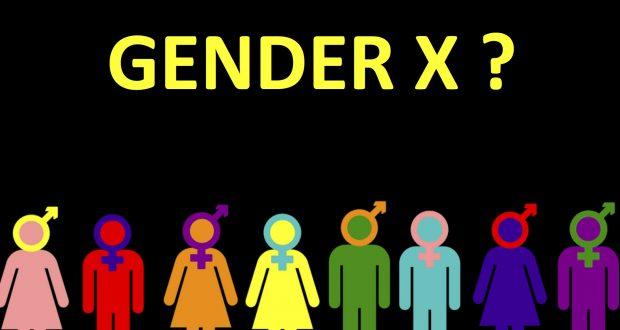 Gender X o Terzo Sesso